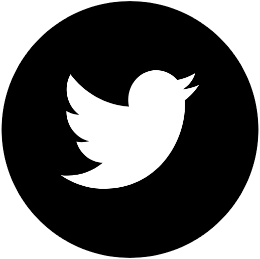 twitter-logo-2